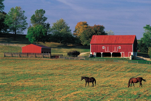 Red barn with 2 horses grazing in field